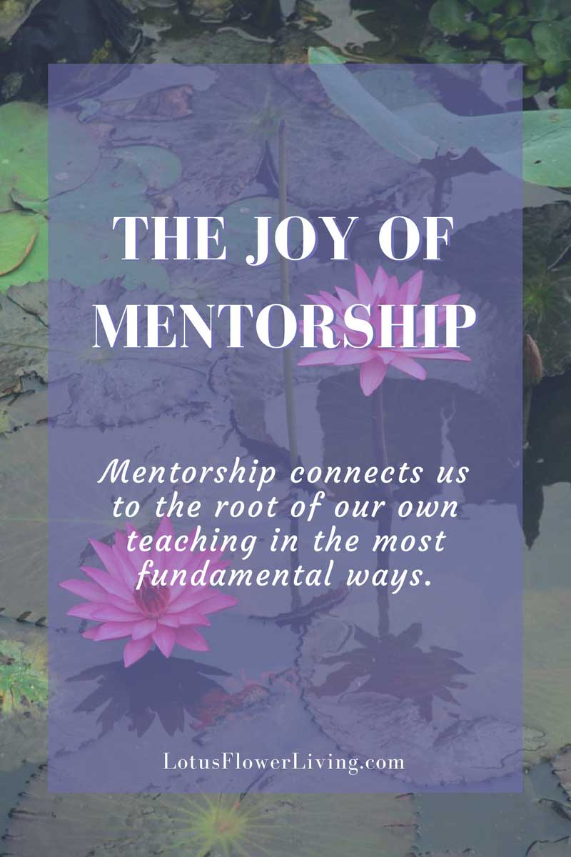 The Joy of Mentorship  - A recap of my three-week healing arts mentorship. By lotusflowerliving.com
