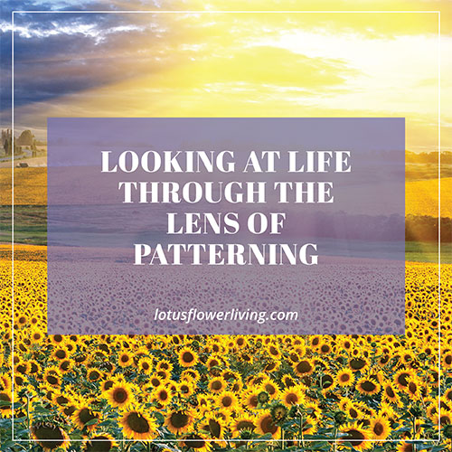 Looking at Life through the Lens of Patterning by LotusFlowerLiving.com